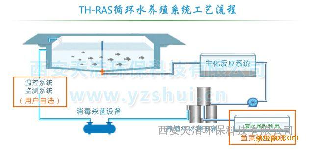 循环水高密度养殖系统