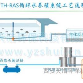 海水循环水养殖系统