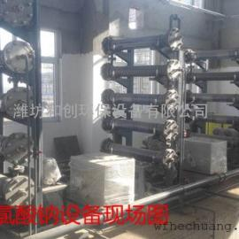 供应大型全自动次氯酸钠发生器