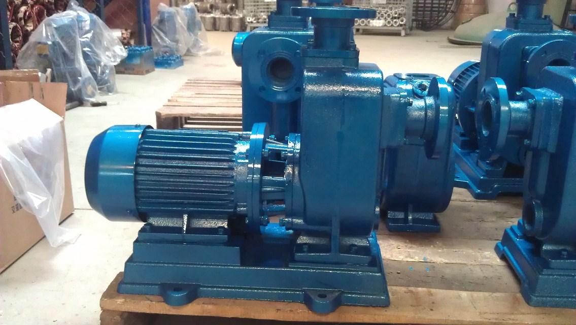 恐惧的�y.bz(_65bz-20离心式自吸泵