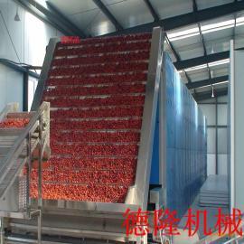 中草药烘干机 辣椒苹果片脱水设备 胖大海干燥机械