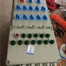 BDMX51L带漏电保护防爆照明(动力)配电箱