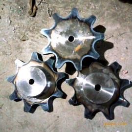 工业链轮 双节距滚子链传动链轮 碳钢传动轮