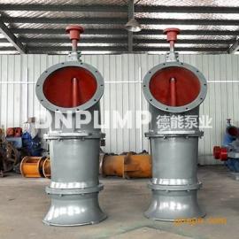 河道排水泵站_ZLB立式轴流泵