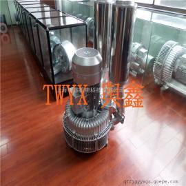 25KW大功率立式高压鼓风机