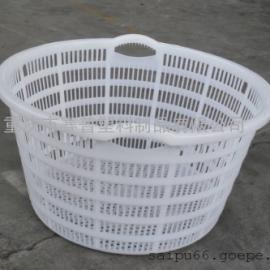 大西瓜箩 塑料胶框西瓜防摔箩