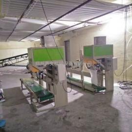供应:芜湖面粉包装秤 粉末包装秤 粉剂包装秤 颗粒包装秤