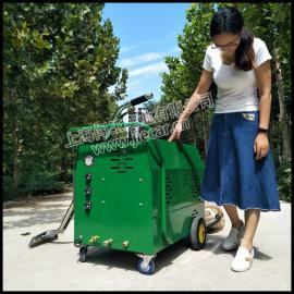 闯王CWRS-02郑州沙发地毯蒸汽清洗设备 羊毛地毯清洗机厂家