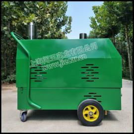 闯王CWRS-02上海厂家供应系列家政蒸汽清洗机 沙发地毯清洗机