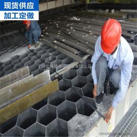 供应品质可靠的湿式静电除雾器 管式玻璃钢阳极管价格公道