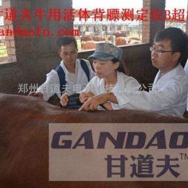 国庆猪牛羊动物背膘仪B超优惠降价报价价格是多少钱