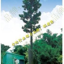 广西南宁美化树立杆,贵港仿真松树信号塔立杆,百色防椰树