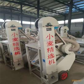 小麦种子筛选机 商用精选机 家用多功能比重分选机