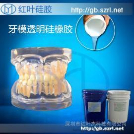 牙科教学模型专用模具硅胶