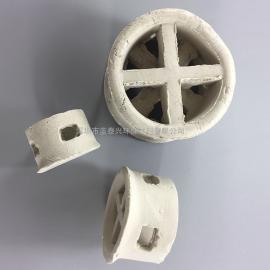 解吸萃取除尘填料塔用陶瓷阶梯环