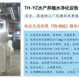 高密度水产养殖水处理设备 室内高密度水产养殖水净化设备