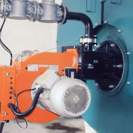 15吨燃气锅炉,15吨燃气蒸汽锅炉价格