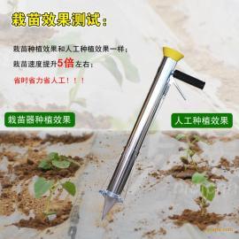 不锈钢栽苗器一天能在多少亩地 点播施肥器 最便宜的栽苗器