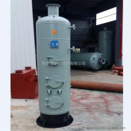 燃煤烧柴小型立式食用菌灭菌蒸汽锅炉
