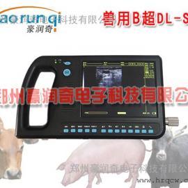 测羊怀孕B超怎么卖,羊用B超测羊怀孕价格
