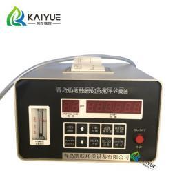 手术室洁净度监测仪 CLJ-E型激光粒子检测器