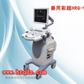 动物彩色B超测孕仪超声波妊娠诊断仪