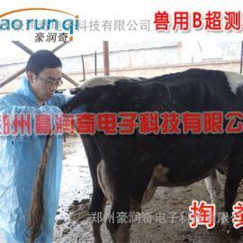 牛用B超超声怀孕检测仪器,母牛B超机价格多少钱