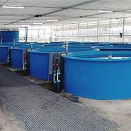 养殖水净化设备