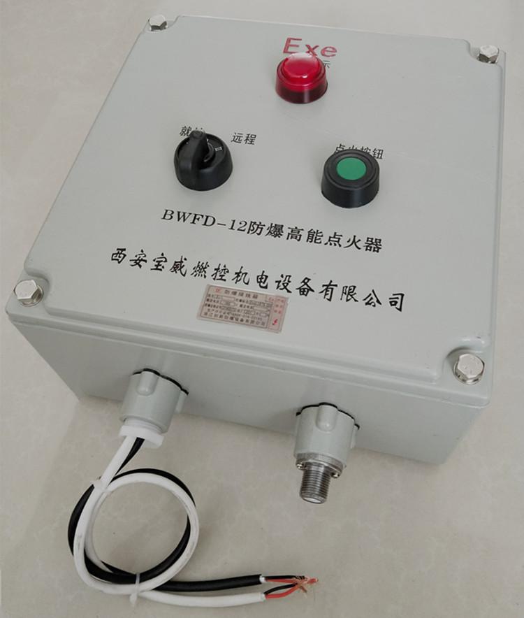 供应手动/远程点火BWFD-12防爆高能点火器 螺纹接口M18*1.0/1.5