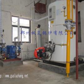 大棚采取暖燃油气热水锅炉