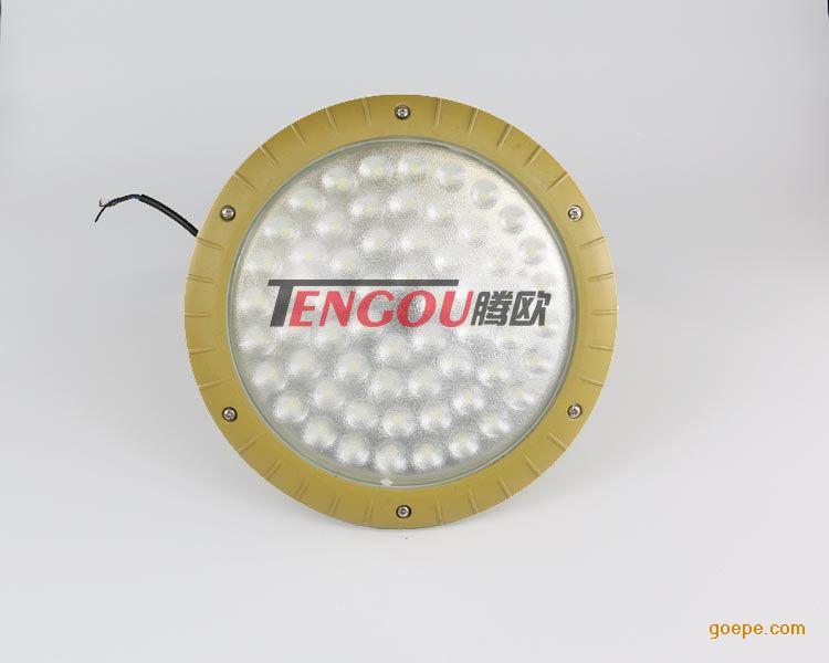 BAD85-40W/220V科瑞灯珠防爆LED免维护灯江苏厂家