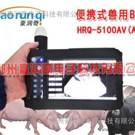 兽用B超HRQ-5100AV,早期妊娠诊断仪,母猪测孕仪