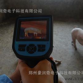 重庆展会动物热成像体温仪,动物B超,宠物B超欢迎招标订购