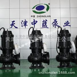 天津大流量污水泵品牌