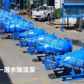 大流量雪橇式潜水轴流泵