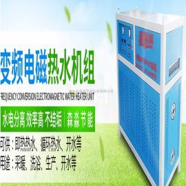 河南环保电磁热水锅炉/南阳免烧智能电热锅炉/免年检