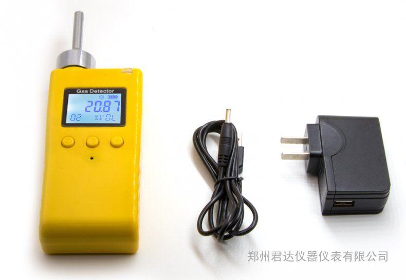 泵吸式气体检测仪BH-80