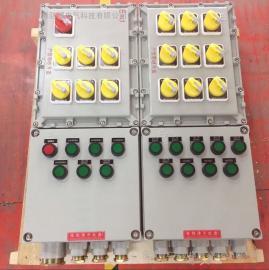 bxk粉尘防爆控制箱 粉尘防爆控制柜价格