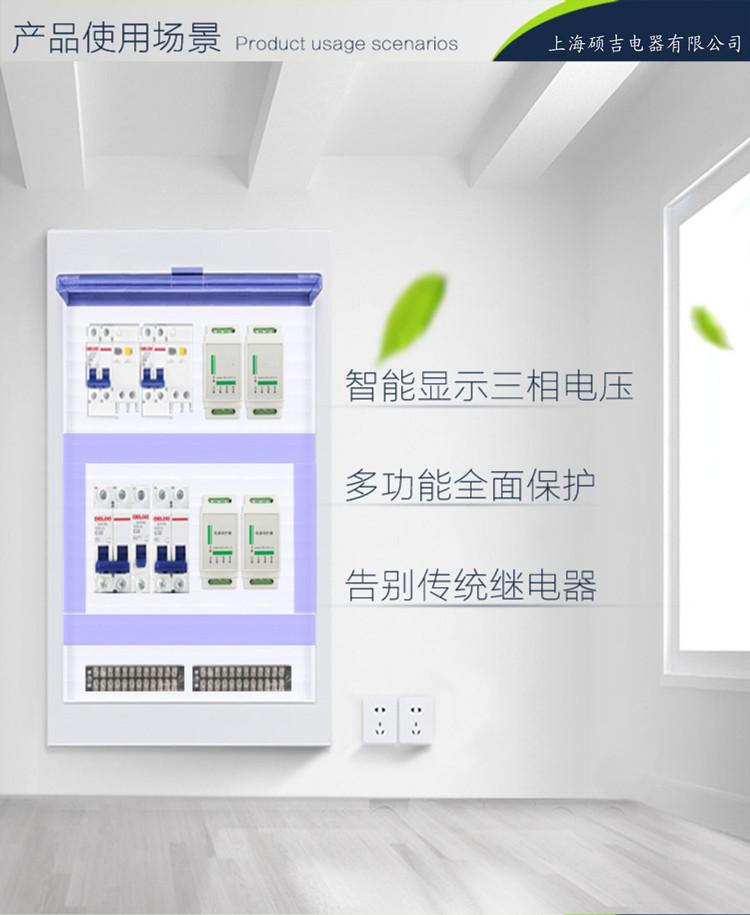 DX100系列电源保护器
