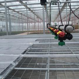 汉明厂家供应 电焊网片 热镀锌网片 温室蔬菜床 不褪色