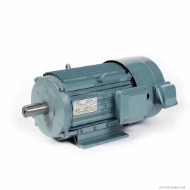 YP-50-0.18-8变频电机CEMA SFC SNMA