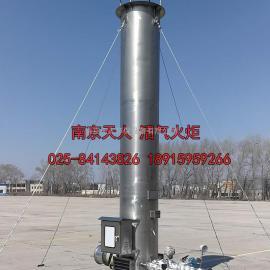 北京天人 填埋场煤气火把 制药厂煤气点燃火把