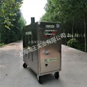 闯王CWR09A燃气移动高压蒸汽洗车机厂家热销推荐创业好项目