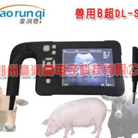 猪用B超能测出来怀孕多少台吗