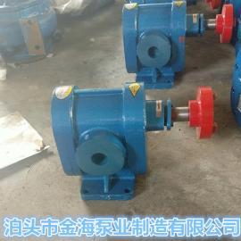 泊头金海批量供应2CY齿轮泵 抽油泵 皂液泵 船用泵