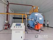 肥料厂、化肥厂专用燃气蒸汽锅炉价格