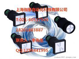 FL20-W系列光纤灯
