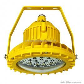 RLEEXL601-XL18防爆LED固态照明灯 吊杆式安装