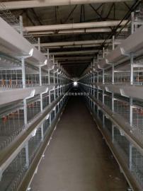 养殖生物质丁养殖汽锅 猪舍环保丁环保加温汽锅超速温度