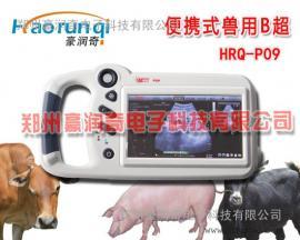 动物手持式B超机,7.0寸屏黑白便携式B超